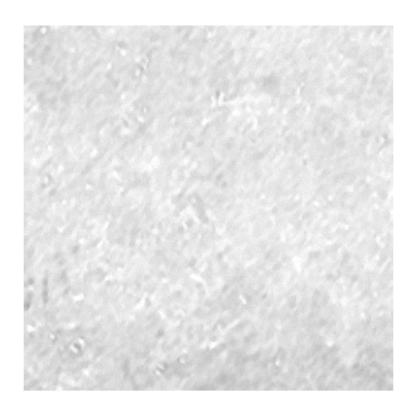 Yttrium Chloride (YCl3.6H2O) Powder-heegermaterials
