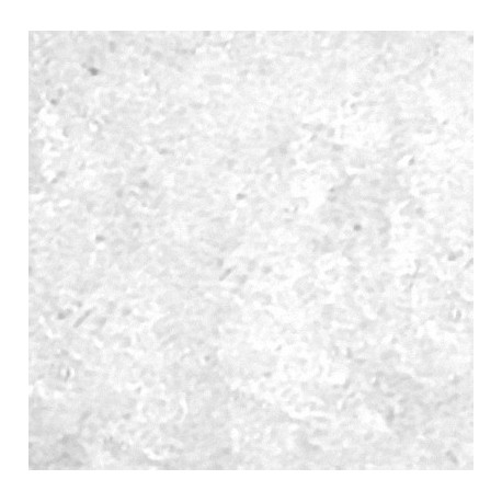 Lanthanum Chloride LaCl3.xH2O-heegermaterials