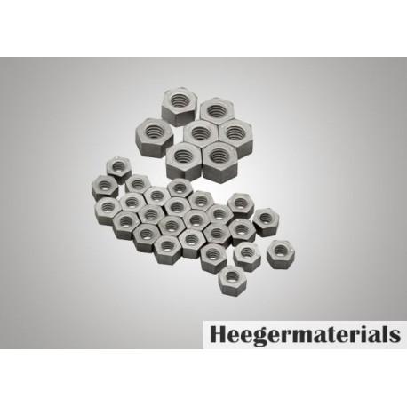 Molybdenum Fastener (Mo Fastener)-heegermaterials