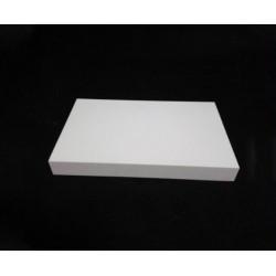 Boron Nitride Plate / Sheet (H-BN Plate / Sheet)